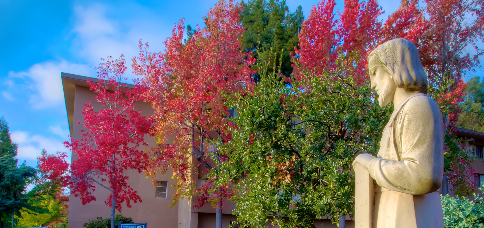 Fall foliage at HNU
